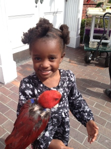 Bird holding was a totally new experience for Joyful but she did it willingly.