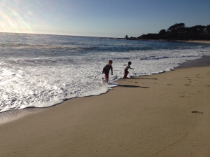 Kids Splashing in the Surf