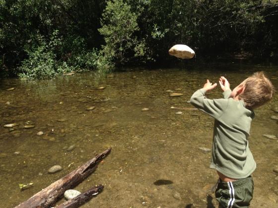 Throw rocks in the creek